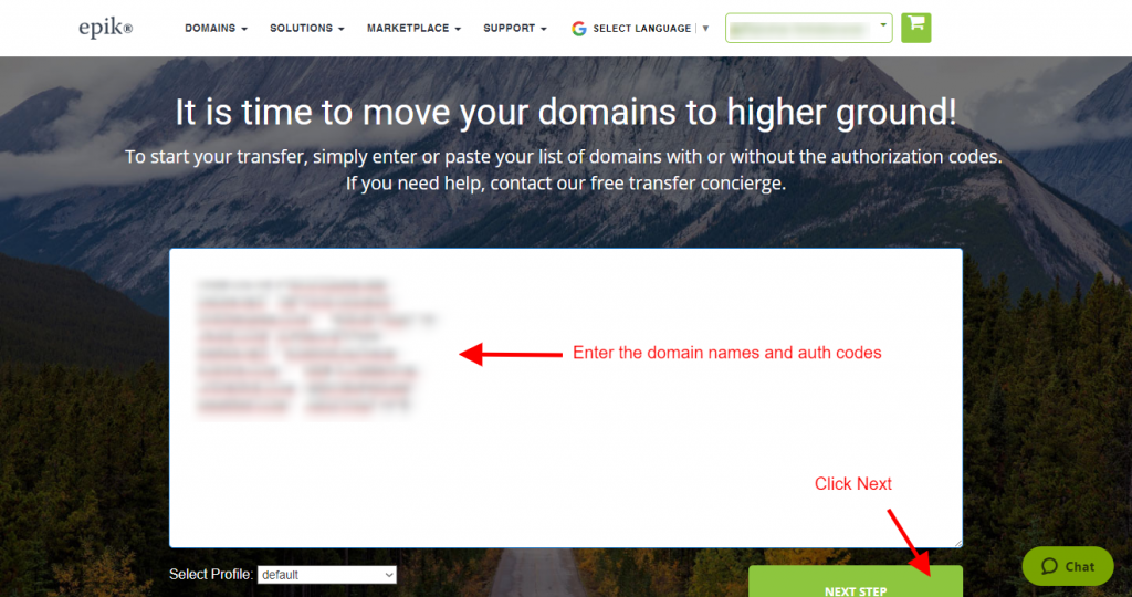 Step 17 - Enter the domain names and auth codes copied from the csv file